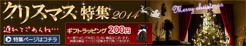クリスマス特集★