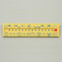 単位換算定規 文房具 定規 単位 換算 面積 体積 物の長さ 重さ 液量 知育玩具 小学生 算数