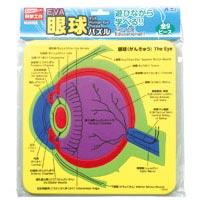 EVA眼球パズル パズル ゲーム 玩具 おもちゃ 眼球 人の体のしくみ 学習 理科 知育玩具