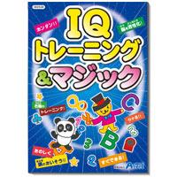 【メーカー在庫限り】 IQトレーニング&マジック  知育玩具 あそび