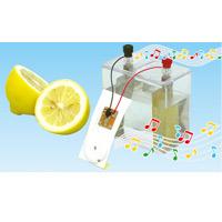 液体電池体験キット 理科 実験 サイエンス 冬休み 夏休み 宿題 自由研究