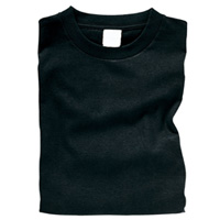 ターナー カラーTシャツ XL 16ブラック [b]