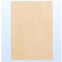 パネル ジャケットJ判 303×303 パネル 絵 美術 作品 水彩画 デザイン イラスト 写真 日本画