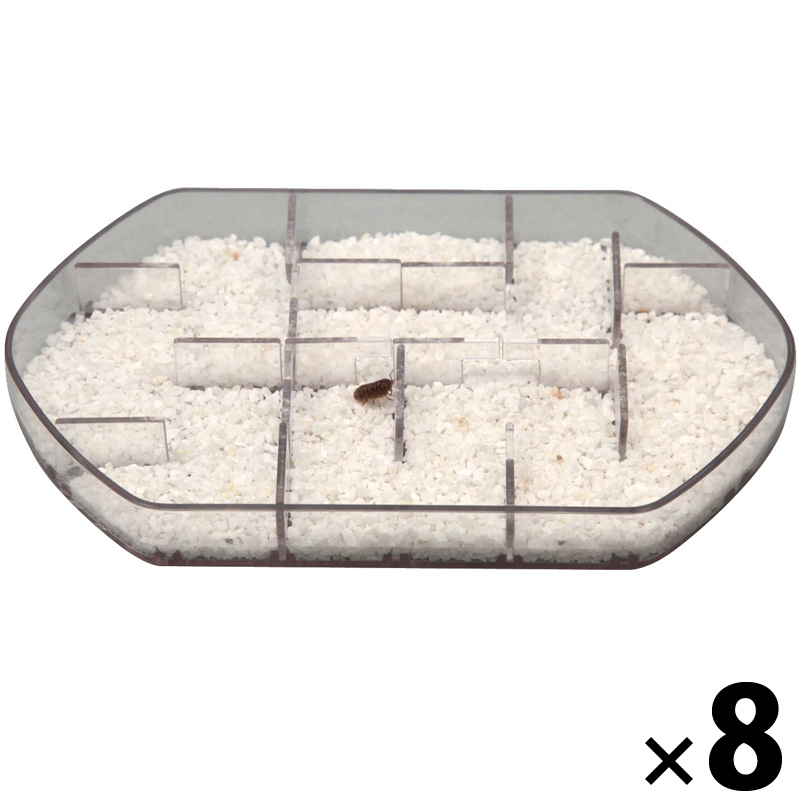 ダンゴムシのヒミツ 観察キット8セット[ケース入] 実験 キット 理科 科学 キッズ 小学生 自由研究 夏休み 宿題 知育玩具