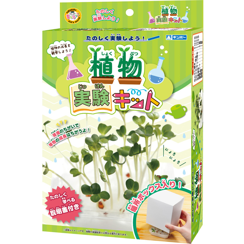植物実験キット スプラウト 野菜 栽培 夏休み 自由研究 実験セット 子供用 小学生 おもしろ実験 簡単 科学 化学 理科