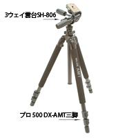 プロ 500 DX-AMT脚のみ 105306 SLIK スリック 三脚 SLIK カメラ用品 カメラアクセサリー