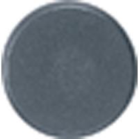 マグチップ 丸型 A-4 Φ25 2ヶ入 72219 マグネット 磁石 黒板 掲示 シンワ測定