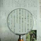 木柄ルーペ75mm