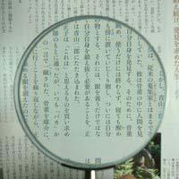 拡大鏡 [手持ちルーペ 虫眼鏡 虫めがね 天眼鏡] デラックスルーペ 1351 2.5倍 100mm 池田レンズ ルーペ 拡大鏡