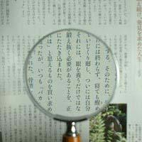 拡大鏡 [手持ちルーペ 虫眼鏡 虫めがね 天眼鏡] 木柄ルーペ 1431 2.5倍 75mm 池田レンズ ルーペ 拡大鏡