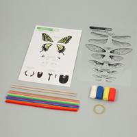 こん虫のからだつくり 昆虫 模型 工作 学習教材 理科 教材 学校教材 自由研究 夏休み 宿題