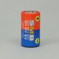 理科教材電池 単1 マンガン 2本組 電池 単1 学習教材 理科 実験 自由研究
