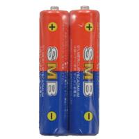 理科教材電池 単4(2本組) 体験 科学 理科 教材 マンガン 乾電池 電池 実験 観察 自由研究 小学生 中学生 夏休み