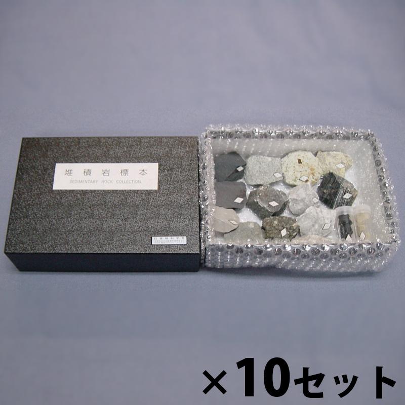 堆積岩 標本 10種10セット組 実験 理科 科学 キッズ 小学生 学校 教材 備品 自由研究 知育玩具 クリスマスプレゼント