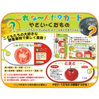 これな〜んだ?カード やさい・くだもの 野菜 果物 食育 ことば カード遊び カード ゲーム クイズ 学習 勉強 知育玩具 3歳 4歳 5歳 カードゲーム 小学生
