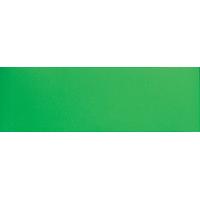 マグシート つやなし B 10×30cm0.8mm厚 緑 72050 マグネット 磁石 黒板 ホワイトボード 掲示 店舗 シンワ測定
