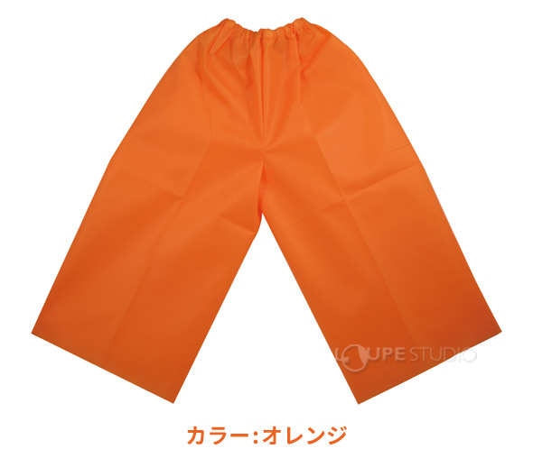 衣装ベース ズボン Sサイズ